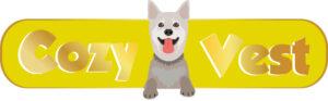 קידום אתרים - לוגו של חברת קוזי וסט