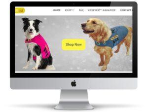קידום אתרים לעסקים עם תמונת רקע של אתר של חברת CozyVest