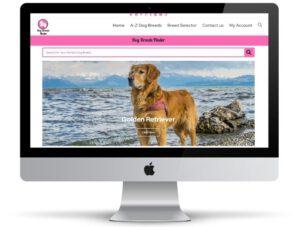 תמונת רקע של אתר של חברת Dog Breeds Finder